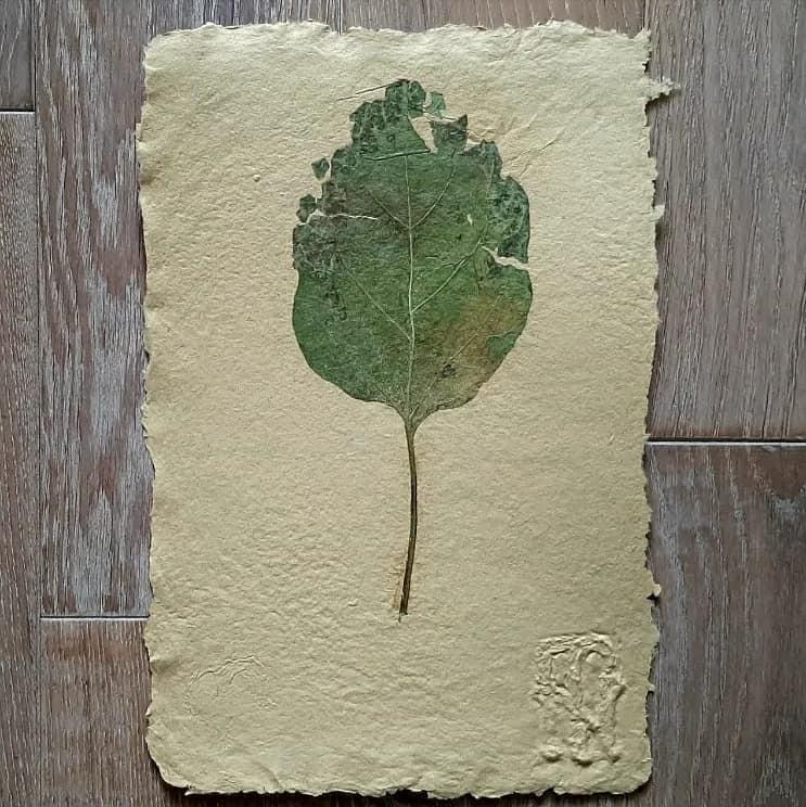 Арт-ательє «Натхнені зів'ялим листям»